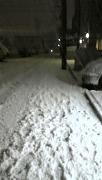 20110214-snow
