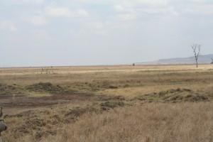 20130809-kenya_tanzania-0801