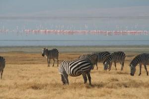 20130809-kenya_tanzania-0914