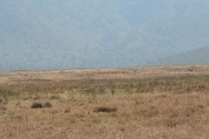 20130809-kenya_tanzania-0996