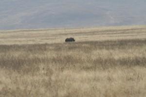 20130809-kenya_tanzania-1033