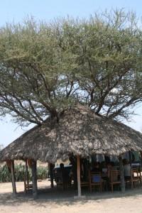 20130809-kenya_tanzania-1216